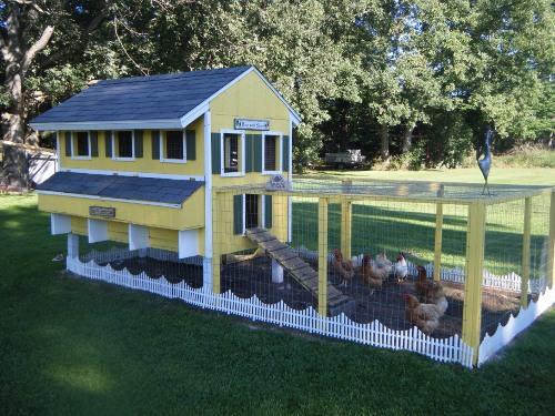 Chicken Coop Photos and Description from Cindy Benkert