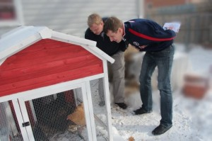 Hunter viewing some 'backyard chickens' around Webster City.