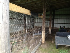 Chicken Wire Wall
