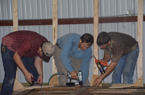 Riley, Brian and Shannon building partitions in the barn