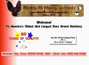 McMurray's sebsite circa 1997