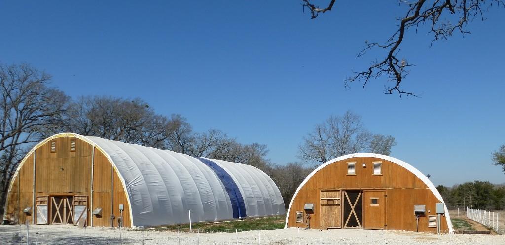 Large Hoop Coops Noah's Ark