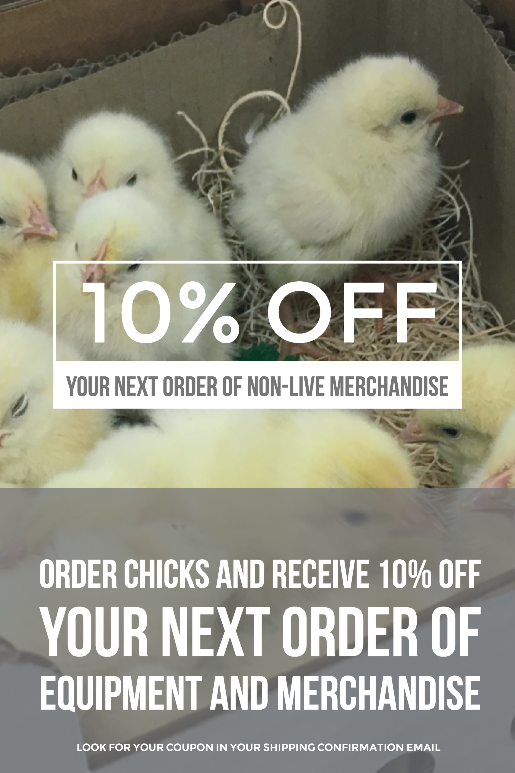 SAVE 10 PERCENT on your next order of poultry merchandise from McMurray Hatchery when you purchase baby chicks.