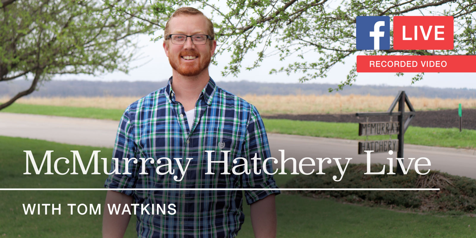 McMurray Hatchery Live with Tom Watkins