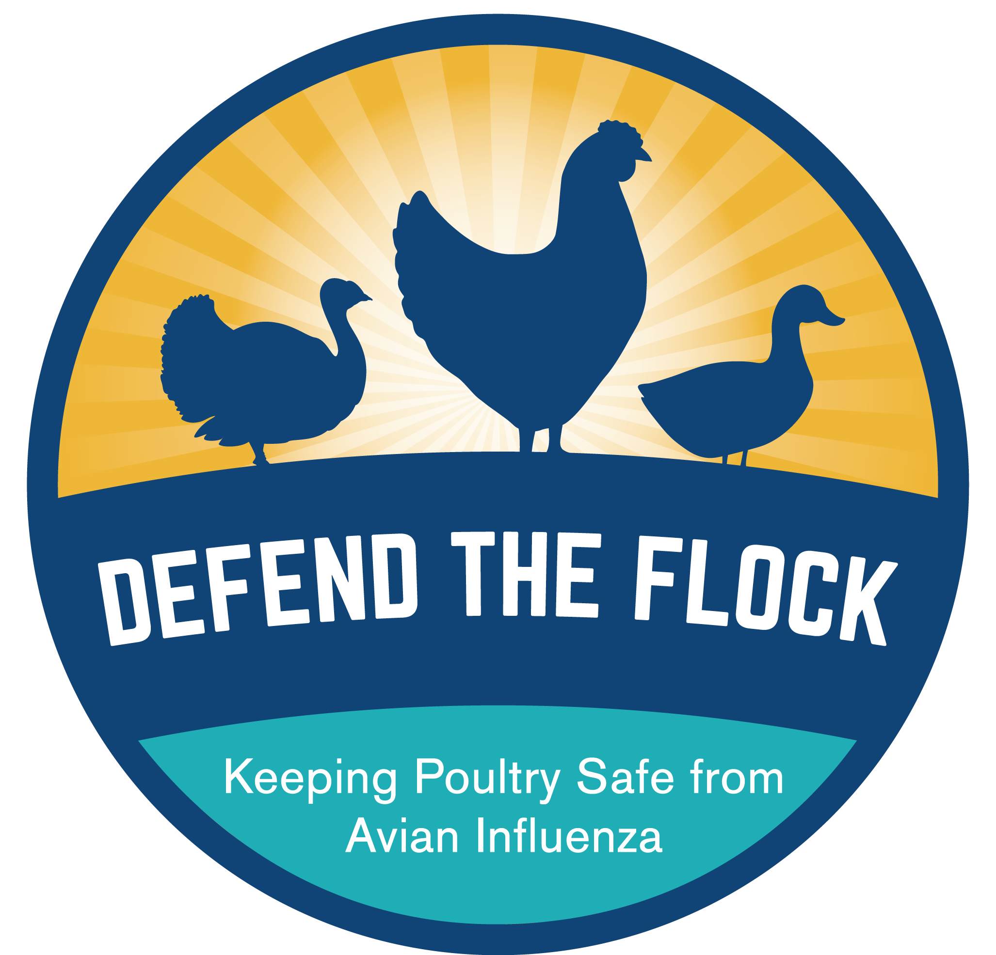 APHIS USDA Defend the Flock