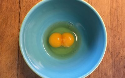 Gail Damerow Discusses Eggs with Double Yolks or Double Shells