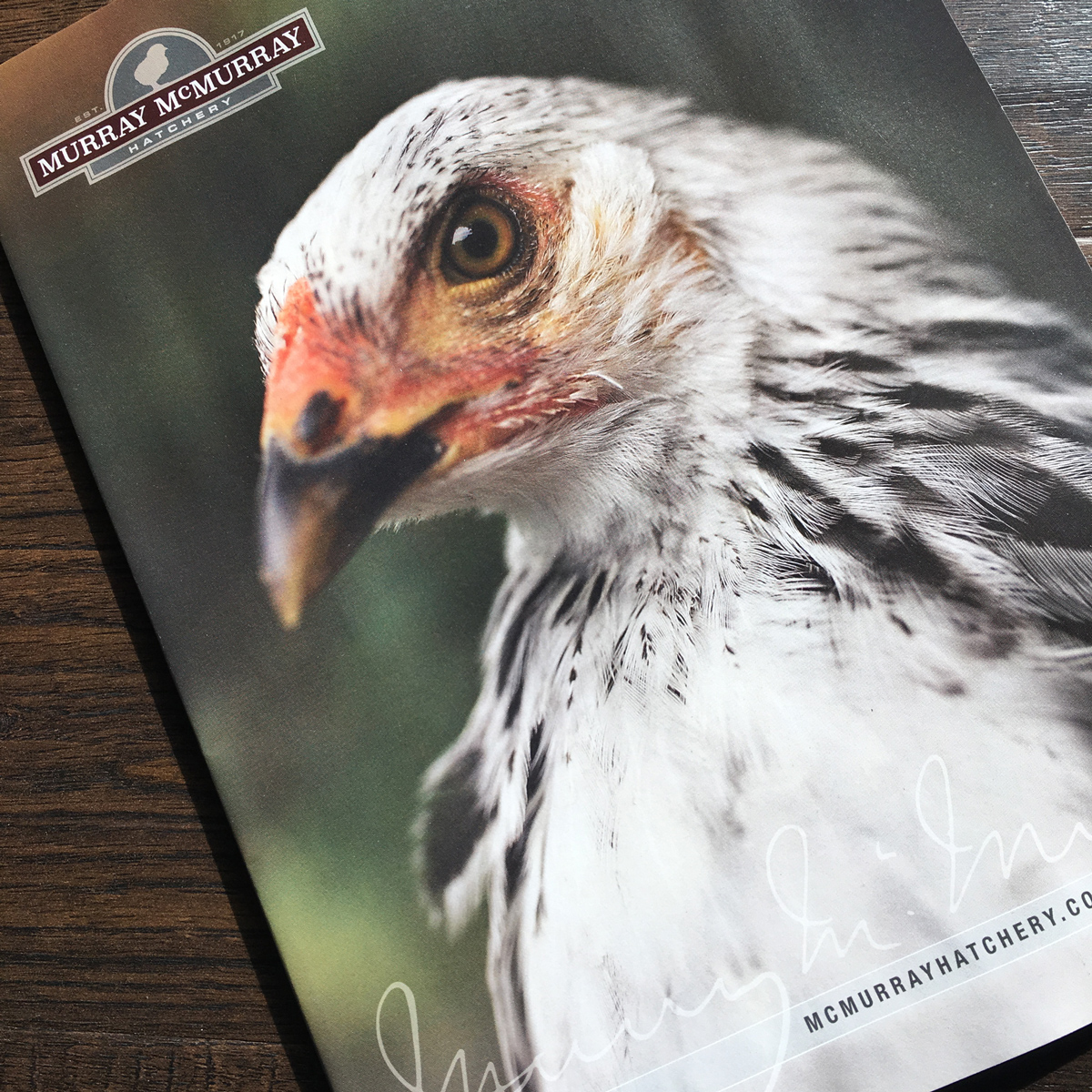 McMurray Hatchery Catalog