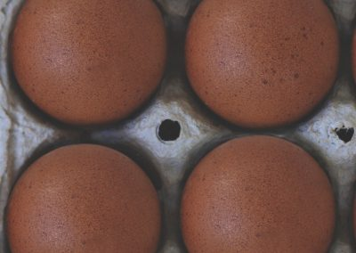 McMurray Hatchery | New for 2019 | French Black Copper Marans Eggs