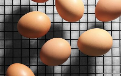 Gail Damerow Discusses Egg Anomalies