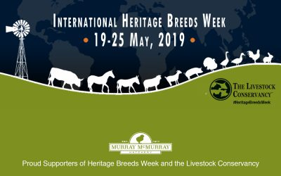 Heritage Breeds Week: Supporting the Livestock Conservancy