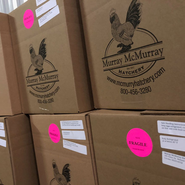McMurray Hatchery 2019 Egg Drive