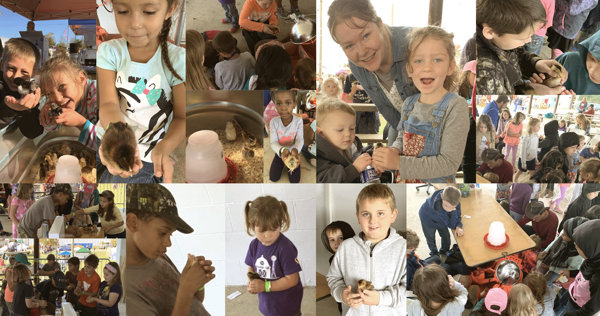 McMurray Hatchery at the 2019 Homesteaders Of America Conference | Kids Classes | Caring for Baby Chicks