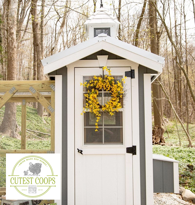Cutest Coops | Classic Chicken Coop