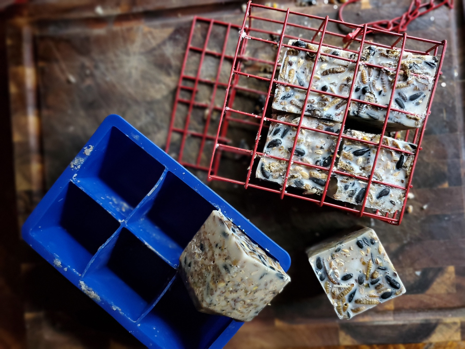 DIY Suet Blocks for Poultry