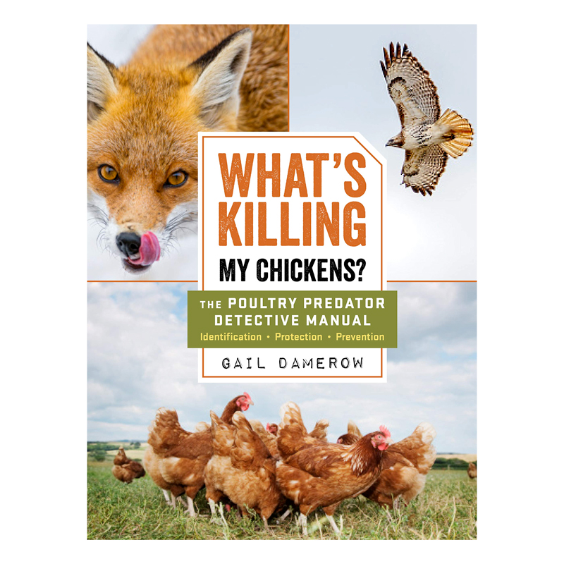 McMurray Hatchery | Books | What's Killing My Chickens by Gail Damerow