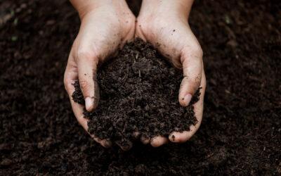 Composting Chicken Manure Fertilizer
